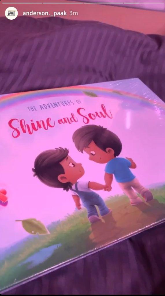 Die Abenteuer von Shine und Soul